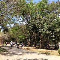 9/1/2012にJoão C.がCircuito das Árvoresで撮った写真
