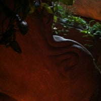 Photo taken at Archetypus Cafe by Jennifer S. on 4/7/2012
