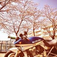Photo taken at 横浜市立 桜井小学校 by @suchi004 on 4/8/2012