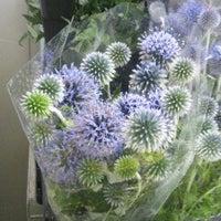 花屋の求人|日本最大級の花屋の求人・バイト情報 …