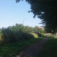 Das Foto wurde bei Epping Forest Track von Kevin M. am 7/24/2012 aufgenommen