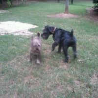Photo taken at Lenox Hills Puppy Path by 《《Lamont》》 on 6/4/2012