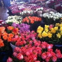 Photo taken at Trafalgar Place Flower Market by Ansia J. on 2/14/2012