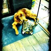 Photo taken at Ed's Pet World by Civilocity J. on 3/27/2012