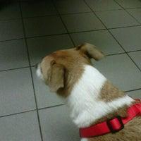 Photo taken at Animal Clinic Of Brandon by Tim on 4/20/2012