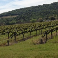 Photo taken at Blue Victorian Winery by Adilson F. on 4/17/2012