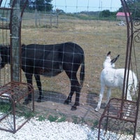 Photo taken at Trading Post by Spencer R. on 7/18/2012