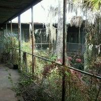 Photo taken at Tom Gaskins Cypress Knee Museum by HorrorArtist M. on 2/4/2012