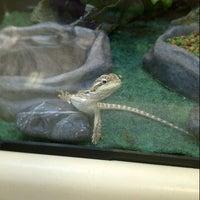 Photo taken at PetSmart by Trina Beana on 7/28/2012