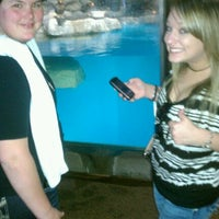Photo taken at Como Zoo - Seal House And Show by Noel D. on 3/27/2012