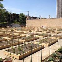 Photo taken at Vedgewater Community Garden-Peterson Garden Project by Michael N. on 5/24/2012