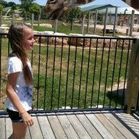 Photo taken at Tanganyika Wildlife Park by Sonja D. on 6/11/2012