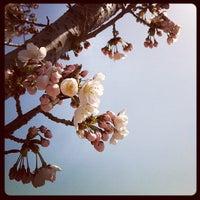 Photo taken at 단국대학교 석주선기념박물관 by Jinho P. on 4/15/2012