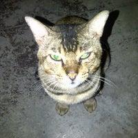 Photo taken at Bayview Villas, Port Dickson by Opiey J. on 8/4/2012