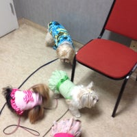 Photo taken at Ahwatukee Commons Vet by Julie on 7/21/2012
