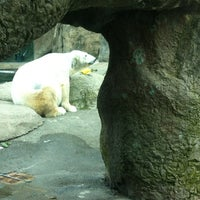 Photo taken at #OccupyPolarBears at @OregonZoo by Jim V. on 3/25/2012