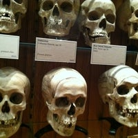 Photo taken at Mütter Museum by Dominick M. on 3/9/2012