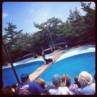 Photo taken at New York Aquarium by Raul C. on 7/22/2012