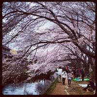 Photo taken at 千本桜 by Yasuyuki S. on 4/7/2012