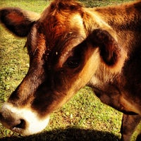 Photo taken at Alstede Farm by Girl Gone Travel on 9/9/2012