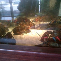 Photo taken at Red Lobster by Colette M. on 8/24/2012