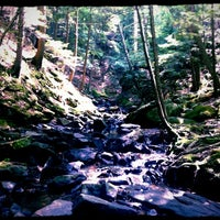 Photo taken at Chesterfield Gorge State Park by Amanda C. on 8/2/2012