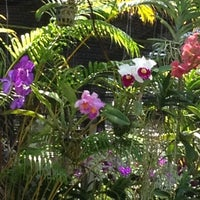 Photo taken at Orchid Farm by NAMPETCH L. on 7/26/2012