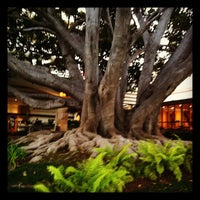 Foto tirada no(a) Fairmont Miramar Hotel & Bungalows por Amy L. em 8/6/2012