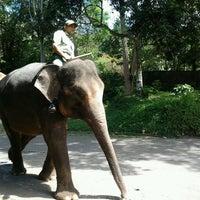 Photo taken at Taman Safari Indonesia II by Eka J. on 7/2/2012