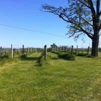 Photo taken at Corcoran Vineyards by Alex K. on 4/25/2012