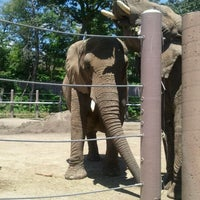 Photo taken at Roger Williams Park Zoo by Daniela M. on 6/15/2012