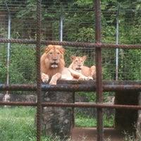 Photo taken at National Zoo Kampot by Ksenia N. on 8/24/2012