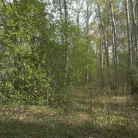 รูปภาพถ่ายที่ Ватутинский лес โดย Tatiana O. เมื่อ 4/29/2012
