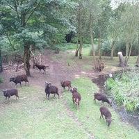 Das Foto wurde bei Volkspark Hasenheide von mrschtief am 7/29/2012 aufgenommen