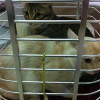 Photo taken at Krongthong Animal Hospital by PANGJiiii W. on 9/6/2012