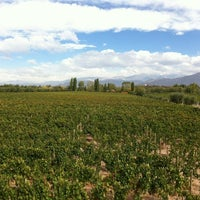 Photo taken at Bacchus Bike & Wine Mendoza by Mike & Anne H. on 4/9/2012