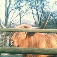 Das Foto wurde bei Volkspark Hasenheide von Gabi D. am 3/24/2012 aufgenommen