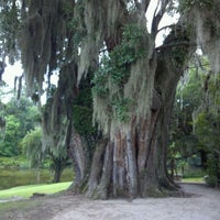 Photo taken at Middleton Place by Mary Sue K. on 6/4/2012