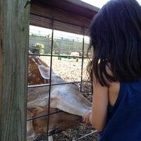 Photo taken at ZooQuarium by John L. on 8/21/2012
