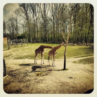 Photo taken at Planckendael by Dirk D. on 4/13/2012