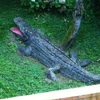 Foto tirada no(a) Krokodillo I por Ana Paula A. em 4/13/2012