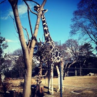 Photo taken at Tennoji Zoo by Ryoji M. on 2/11/2012