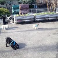 Photo taken at Sirius Dog Run by Van R. on 4/4/2012