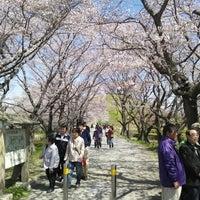Photo taken at さきたま古墳公園 by Iwaiwa K. on 4/8/2012