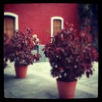 Photo taken at Traspatio Café by Ivonne G. on 8/24/2012