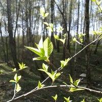 Foto diambil di Юго-западный лесопарк oleh Vlad K. pada 4/27/2012