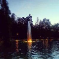 Photo taken at Parco Termale Villa dei Cedri by fase on 7/29/2012