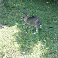 Photo taken at Erie Zoo by Joseph K. on 7/13/2012