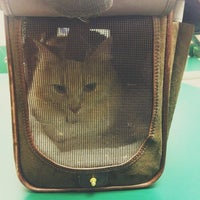 Photo taken at Novey Animal Hospital by Melissa on 9/5/2012