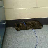 Photo taken at Michigan Humane Society by Mel S. on 6/15/2012